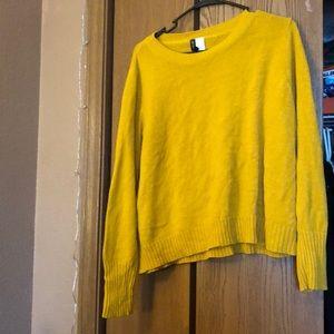 Mustard Yellow Sweater.